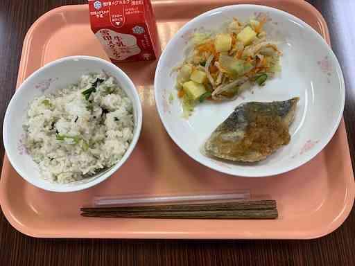 10081菜めし.jpeg