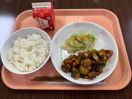 10131魚と野菜の五色あんかけ.jpeg